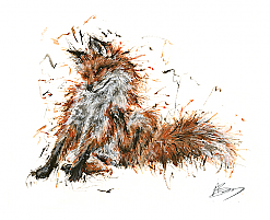 Itchy Fox