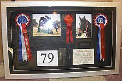 HORSE ROSETTES £85