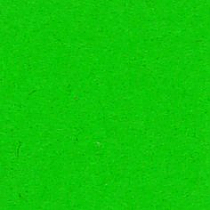 Lakeland Green